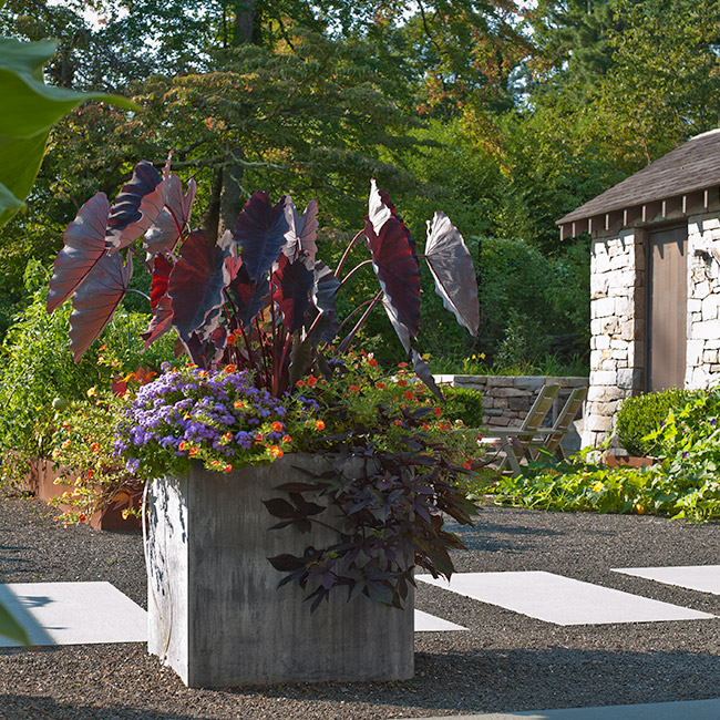 The LaurelRock Company provides year-round property enhancements such as Summer container gardens.